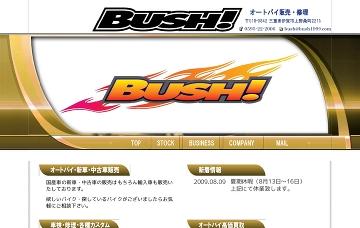 ブッシュ(BUSH)